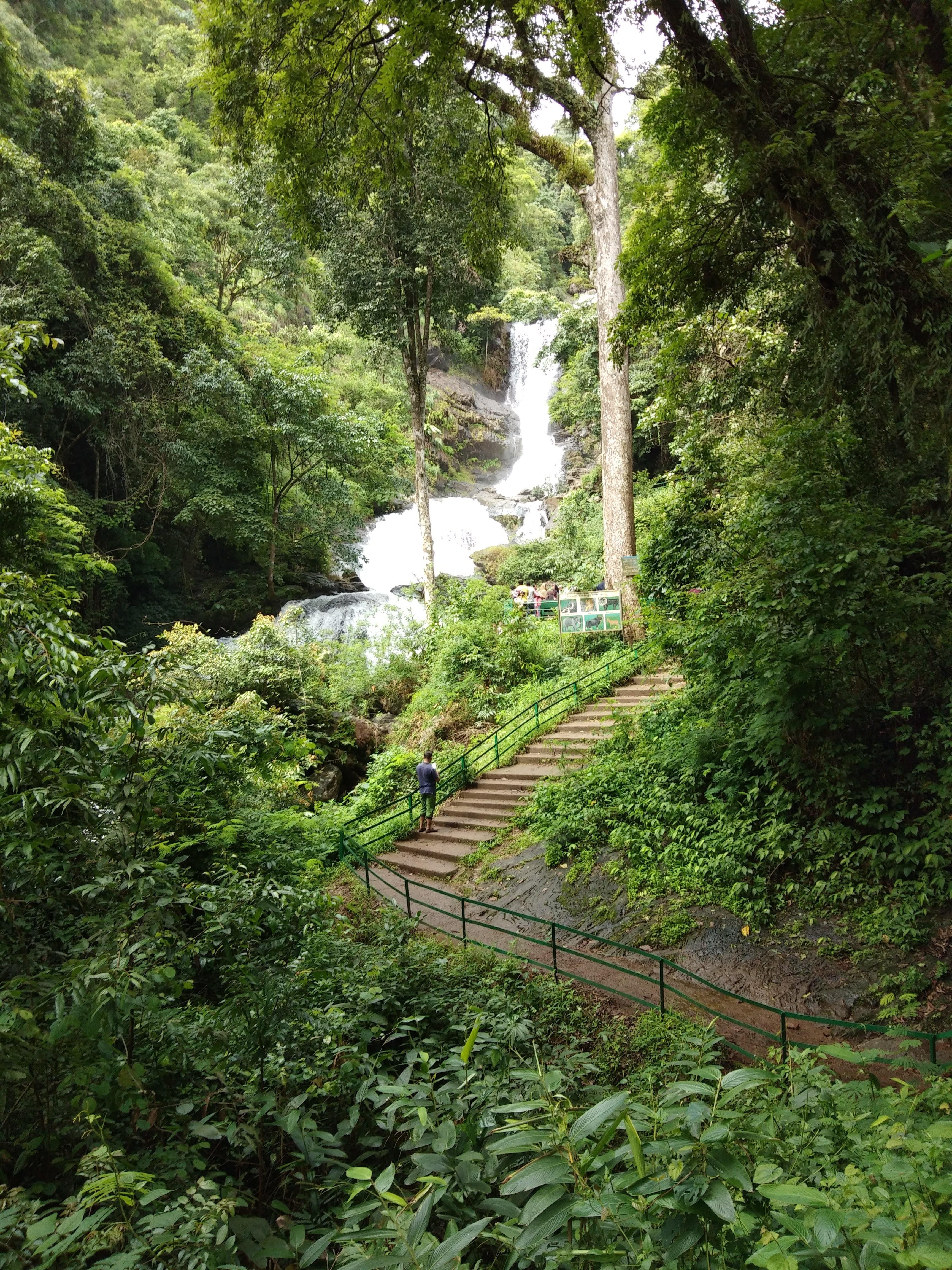 Iruppu Falls | Viyantra